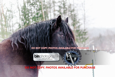 RTH_Mountain-Mud-Run-Meltdown_021118_4601