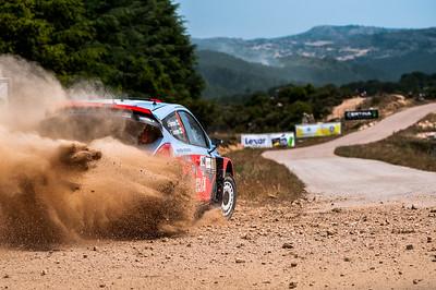 "06.06.2014 - Rally Italia Sardegna 2014 - Special Stage 2 ""Terranova Nord"". Hanninen - Tuominen. Hyundai i20 WRC."