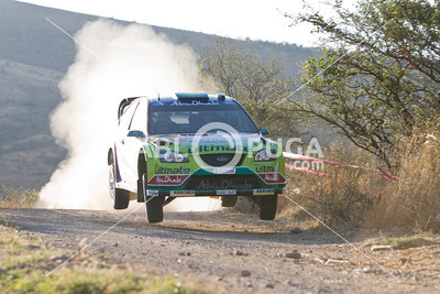 WRC08_SD_2725_HR