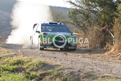 WRC08_SD_2726_HR