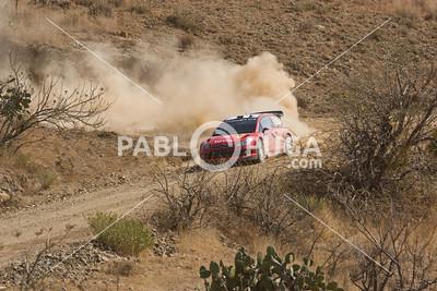 WRC08_SS3_3379_HR