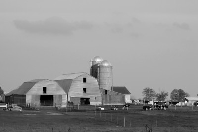 Mio | Amish Farm | Oscoda County