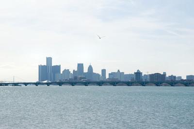 Blue Detroit City