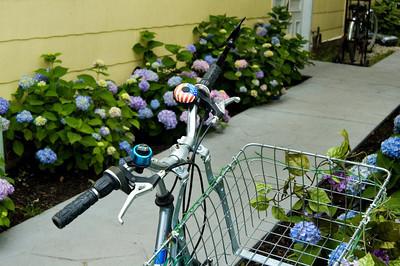 Backyard with Bikes on Mackinac Island