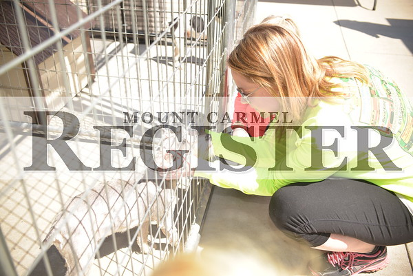 2015 Wabash County Animal Shelter