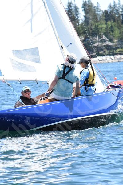 Great Harbor Dream Pursuit Race