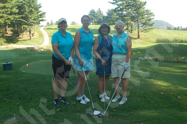 Tee Off for Teal
