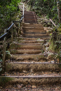 The steps used by walkers up Mount Kinabalu, Borneo