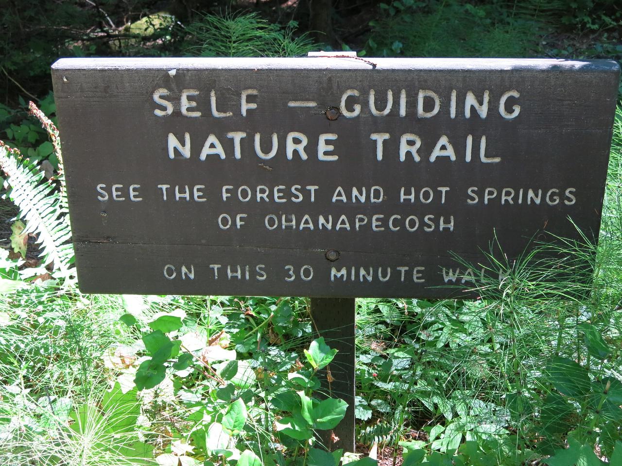2016-08-10 hike (1)