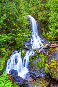"""Hidden Gem,"" Falls Creek Falls on Mt Rainer, Mount Rainier National Park, Washington"