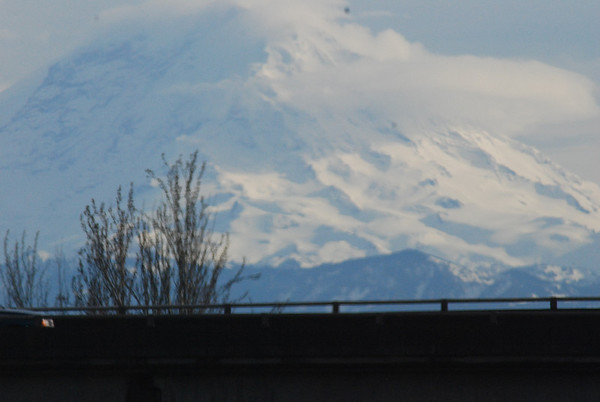 Mount Rainier and other wonderful sites in the Seattle area!