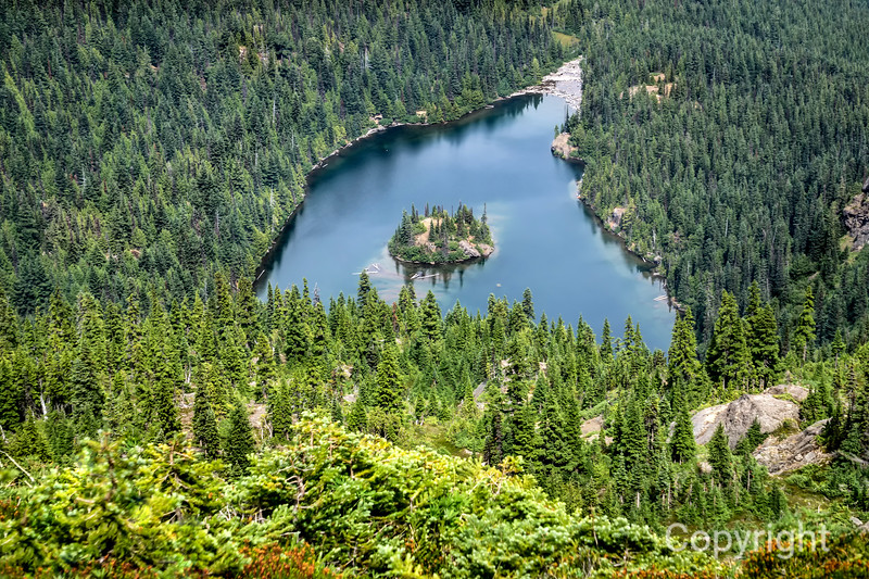 Above Lake Angeles Olympic NP