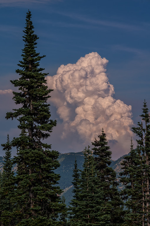 Forest Fire viewed from Sunrise Region