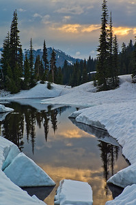 Tipsoo Lake in late Spring