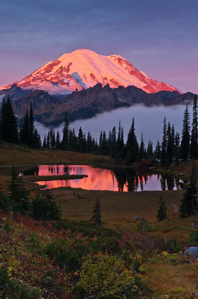 Sunrise Reflection on Mount Rainier