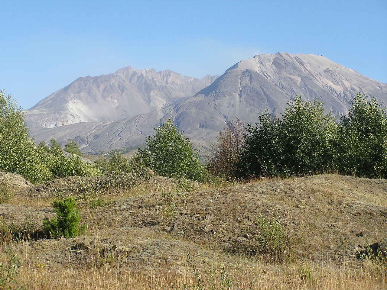 Mt St Helens from the Hummocks Trail.