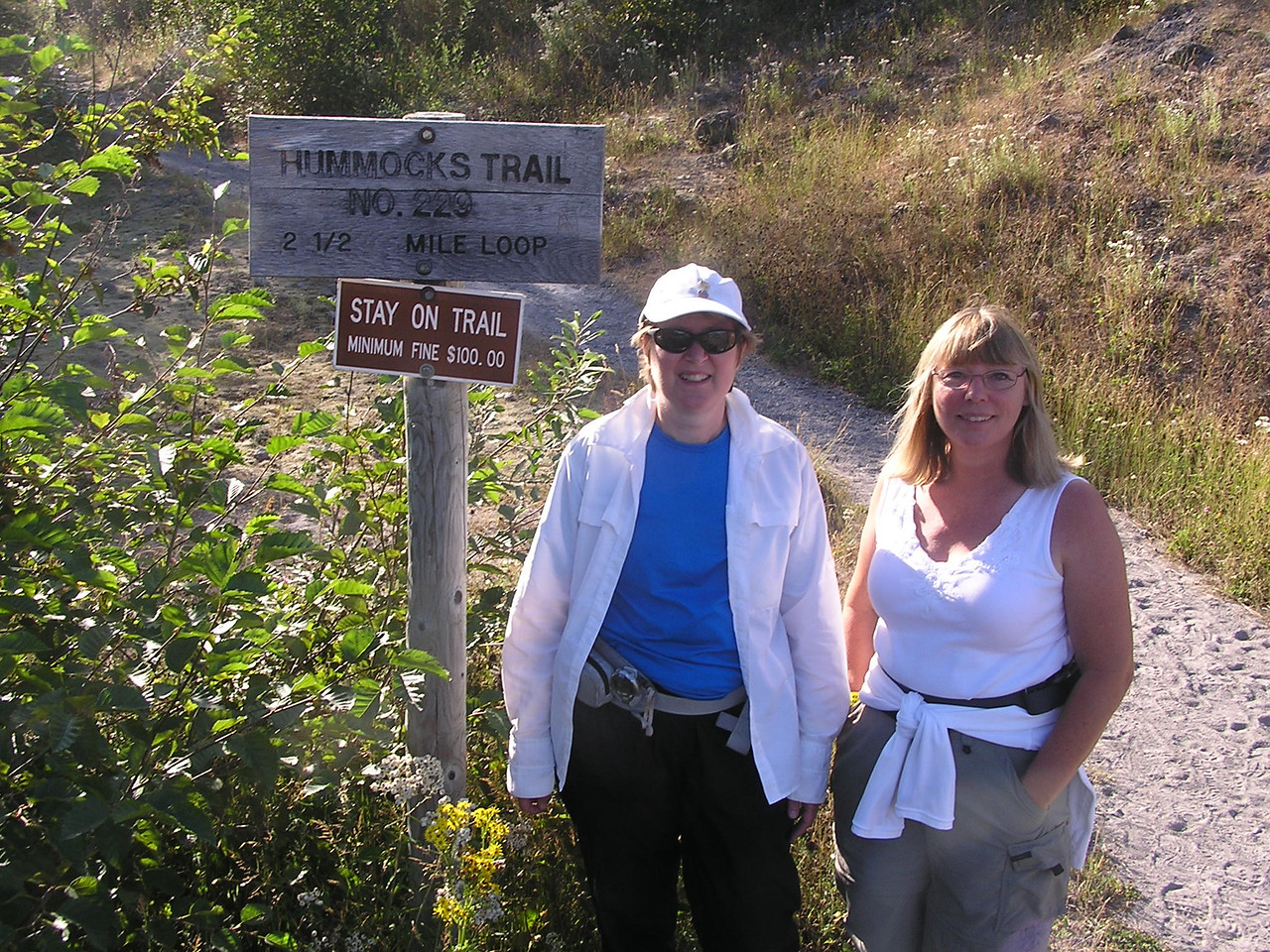 At the start of the Hummocks Trail, which is back down the highway towards I-5 from the Johnston Observatory.  The Observatory is on a ridge, the Hummocks Trail is in the valley near the river.