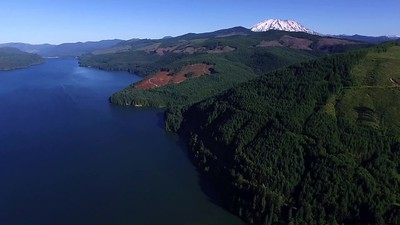 2-Peek-a-boo with Mount Saint Helens at Swift Lake