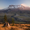 Evening Light on Mount St. Helens
