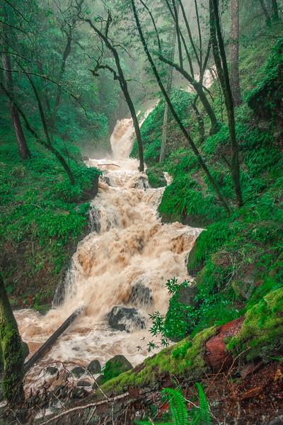 High Water at Cataract Falls