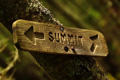 Summit Ayone?