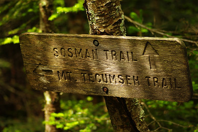 Mount Tecumseh Trail and Somsman Trail Sign in the Light