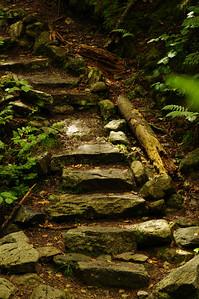 The Original Stairmaster