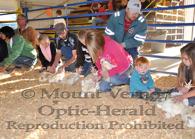 Mount Vernon / Saltillo FFA 4-H Project Show