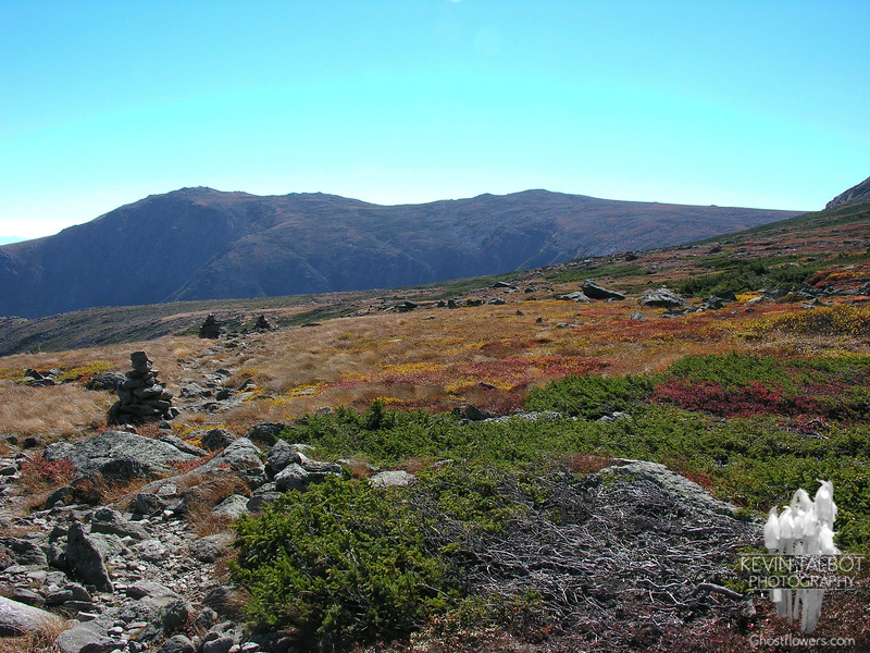 View south to Boott Spur on the Alpine Garden Trail.