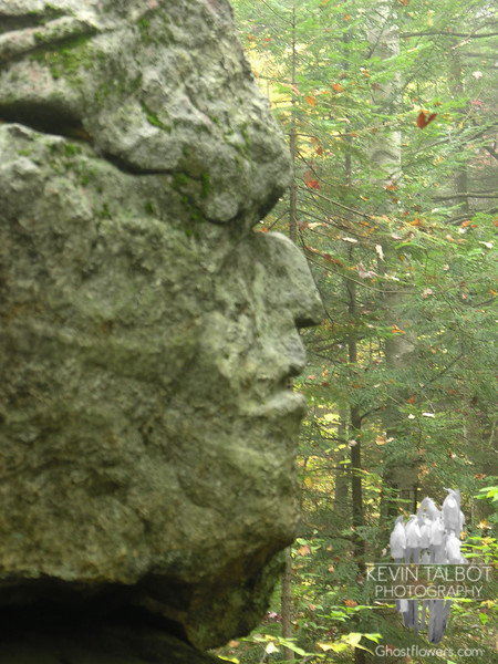 "On route 2 in Shelburne is the ""Old Man of the Valley""."