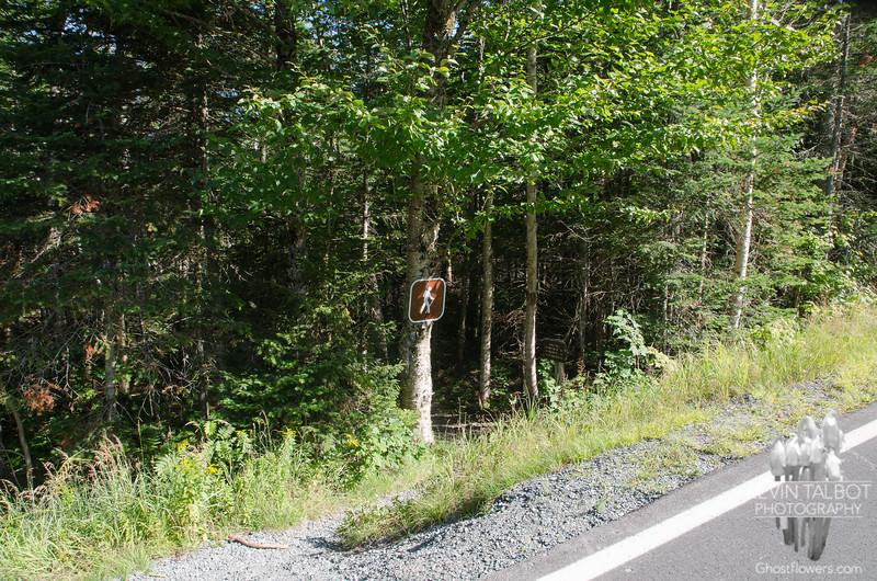 Jewell Trail starts across Base Road from Ammonoosuc Ravine Trailhead Parking...