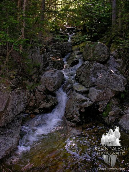 Mount Washington/Crawford Path 7/3/05