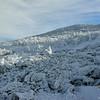Frozen landscape at 5300'.