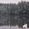 Across the lake.