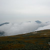 Clouds in Great Gulf block view of Northern Presidentials.