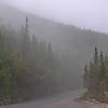 Foggy Auto Road.