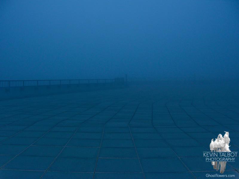 Foggy Obs deck.