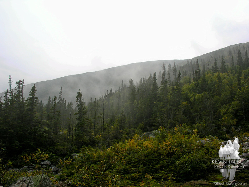 Fog on the slopes at Halfway House site.