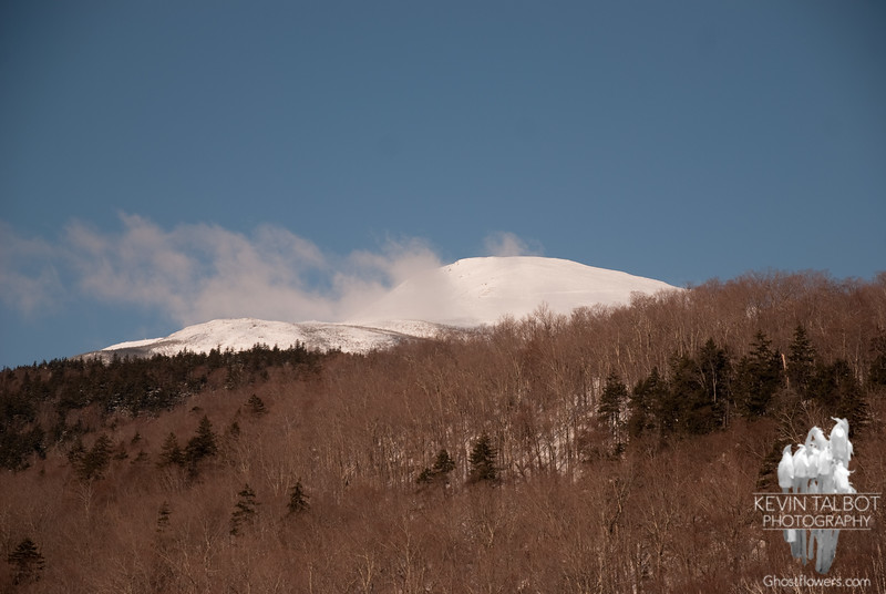 Wednesday, 3/23/2011. View up to the summit from the base of the Auto Road.