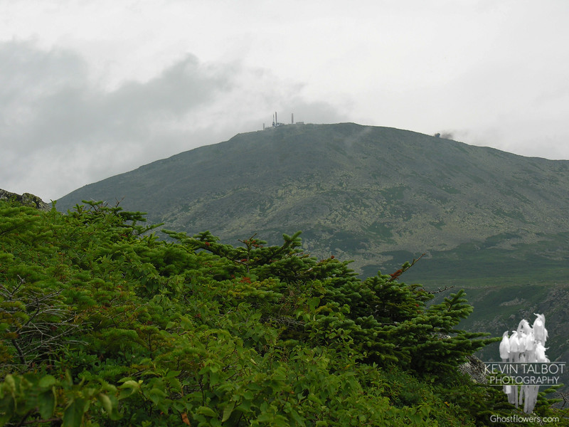 Peek at the summit of Mount Washington from the Boott Spur Trail.