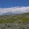 The Davis Path climbs this ridge to meet the Crawford Path.