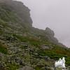 Demon profile on Boott Spur Trail.