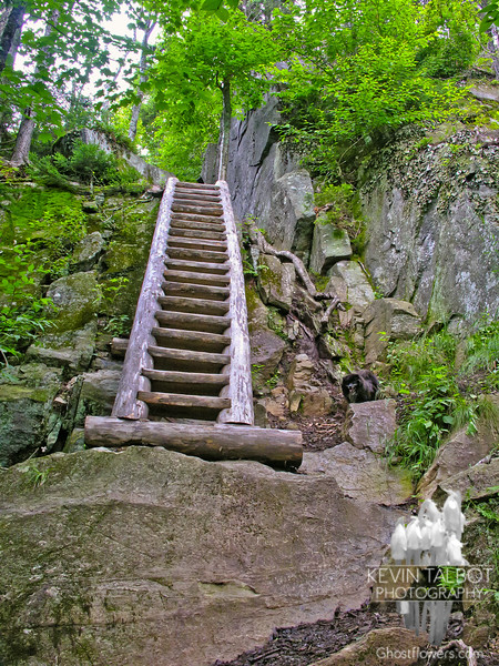 The ladder on Boott Spur Trail.