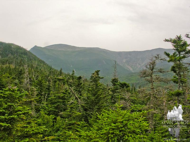 L to R Lion's Head, the summit and Huntington Ravine.