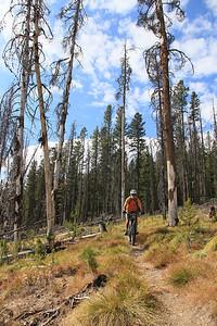 Wayne enjoys the Continental Divide Trail near Reimel Creek