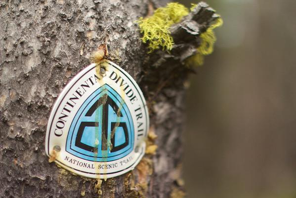 CDT emblem near Gibbons Pass