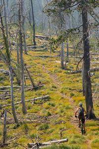 The Divide Nat. Rec. Trail