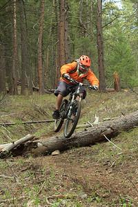 Hopping logs near North Fork, ID