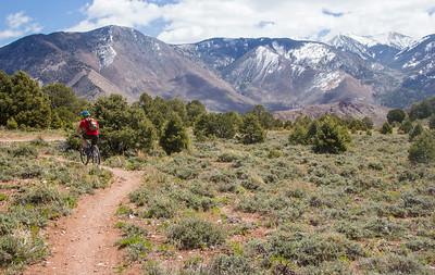 Mountain biking the La Sal Mountains Utah