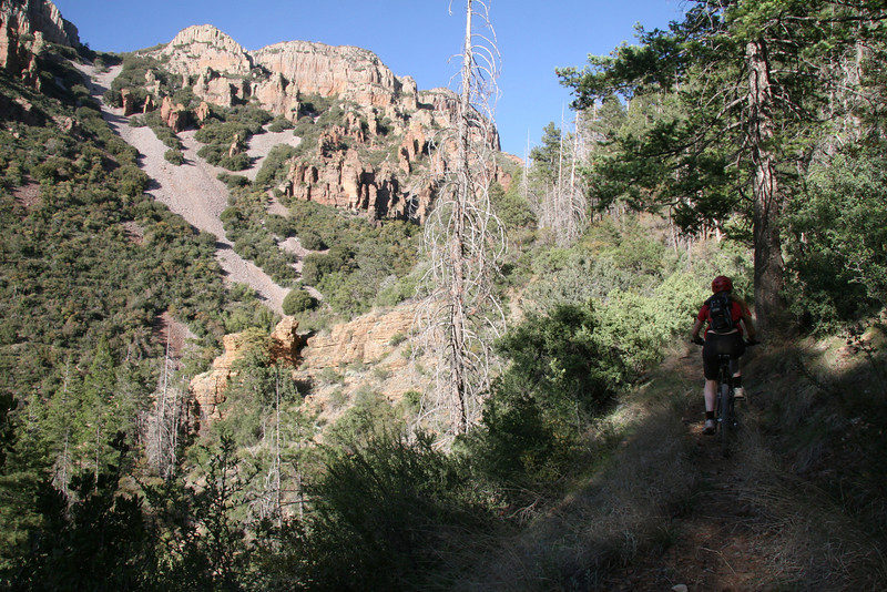 More single track riding.  Although not evident this is really steep.
